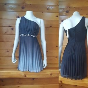 NWT Beautiful Speechless One Shoulder Dress (Sz 5)